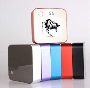 LCD Digital Display Power Bank with HD Advertising Logo for Promotion