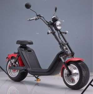 2000W 45km/H Bicycle High Quality Wide Wheel Fashion Lithium Battery Electric Motorcycle