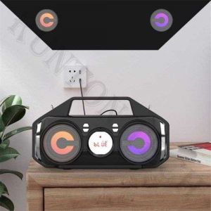 Yzs-M11 Professional Portable Wireless Karaoke Speaker with Microphone LED Light